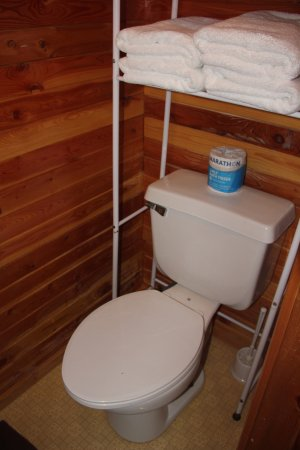 Marion, MT: The Cottage- bathroom
