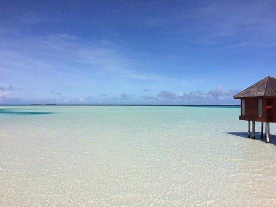 Zdjęcie Anantara Dhigu MaldivesResort