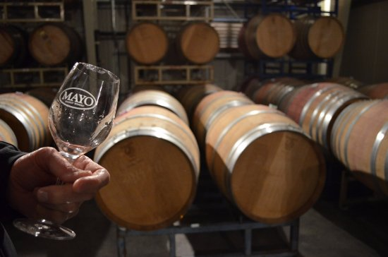 Extranomical Tours : Mayo Family Winery