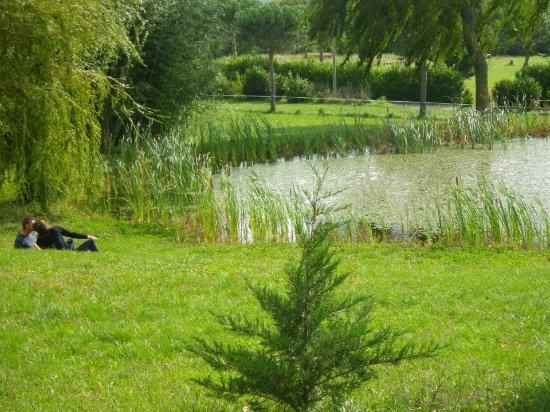 Foto de Domaine Equestre des Pialoux, Montvendre: Re-mes copains (d'une autre mère)