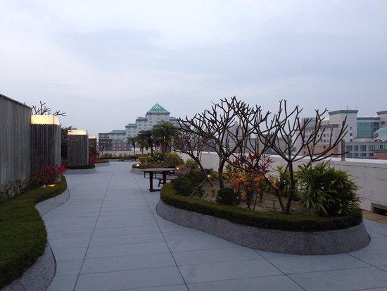 Taipung Suites: 頂樓的小庭園,可以看到台南市政府