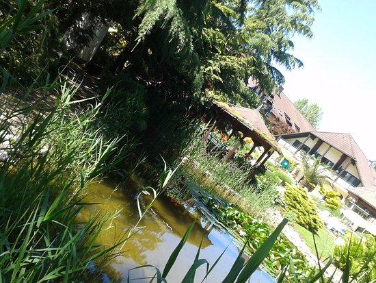 Bad Radkersburg, Austria: Eine Idylle zum Verweilen