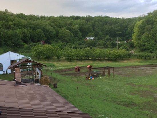 Blaj, Romania: View from Room