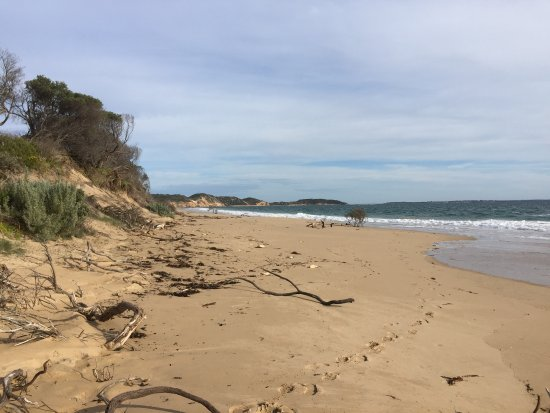 Portsea, Australia: photo2.jpg