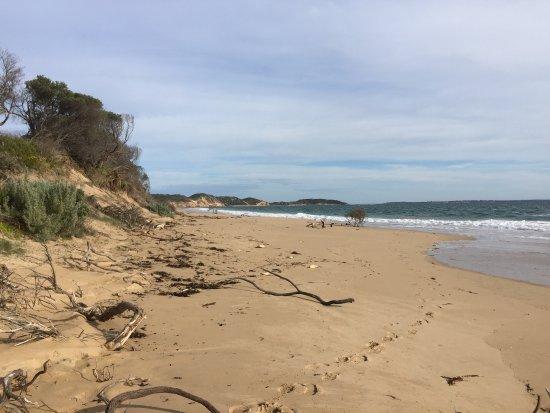 Portsea, Australie : photo2.jpg