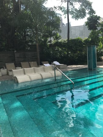 Grand Hyatt Singapore: Hotel pool, room, pics of the food next door!