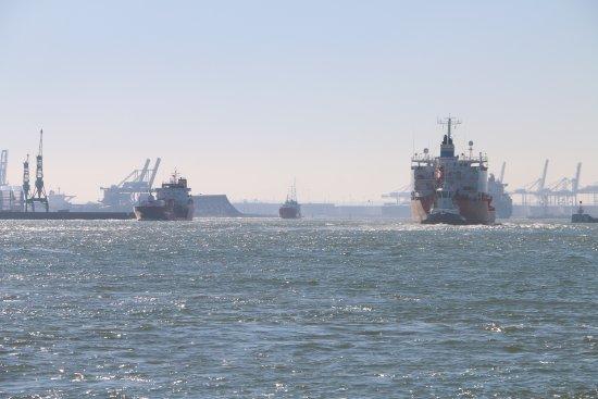 Le Trafic Est Toujours Tres Important Dans Les Bassins Du Port Du