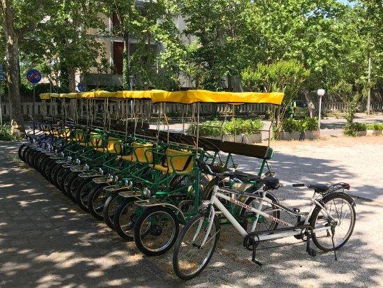 Noleggio Biciclette e Riscio Orioli