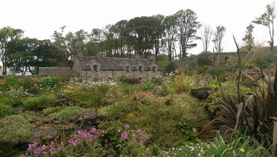 Lissadell House: The Alpine Garden