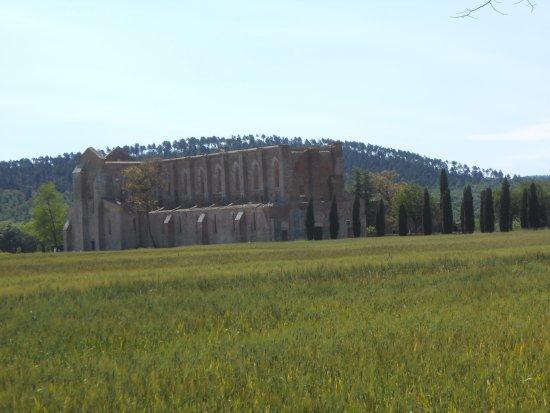 Chiusdino, Italia: Vue en arrivant à l'Abbaye de San Galgamo