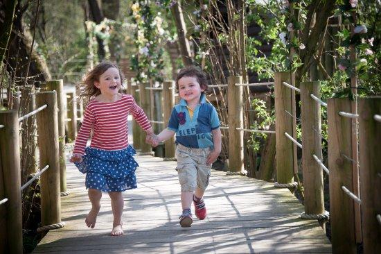 Wisborough Green, UK: Fishers Adventure Farm Park - Woodland Walk