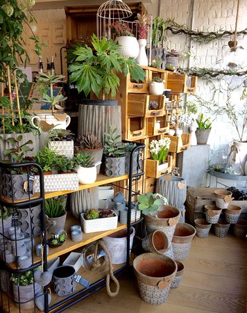 Epping, UK: Pots, planters and succulents in the shop