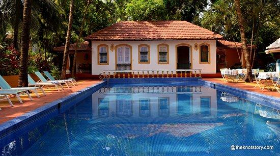 Анджуна, Индия: pool side view