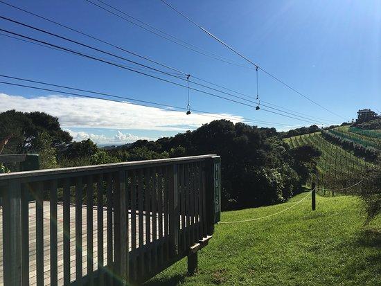 Onetangi, New Zealand: Zip one
