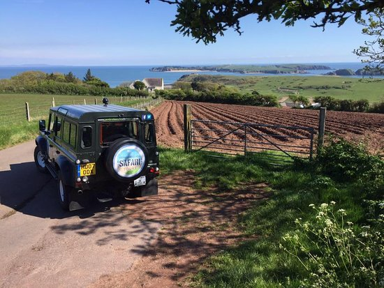 Pembrokeshire Safari Tours