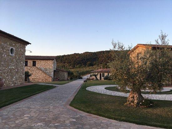 Serre di Rapolano, Italia: photo2.jpg