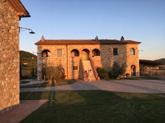 Serre di Rapolano, Italia: photo4.jpg
