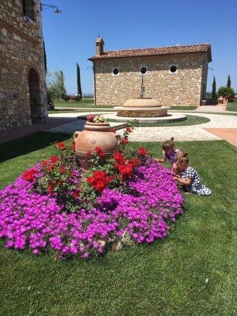 Serre di Rapolano, Italia: photo5.jpg