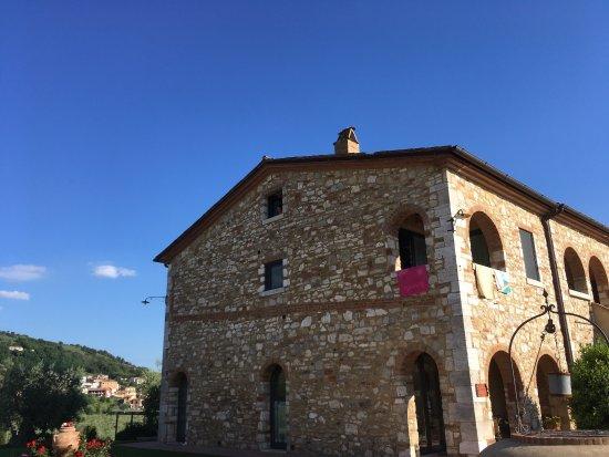 Serre di Rapolano, อิตาลี: photo6.jpg