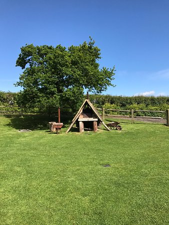 Feather Down Lunsford Farm: Safari tents, sea views, shower rooms, pizza oven, tree swing