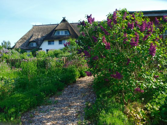 Wieck, Germania: Kräutergarten