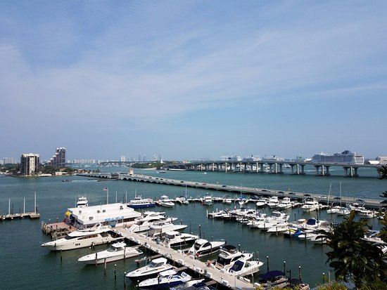 Doubletree by Hilton Grand Hotel Biscayne Bay: View of Port of Miami from pool area