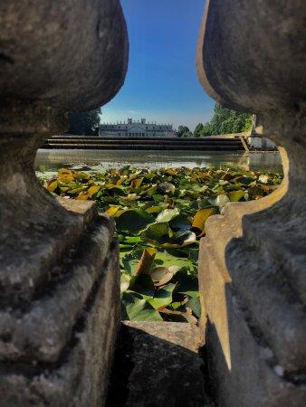 Stra, Italië: photo2.jpg