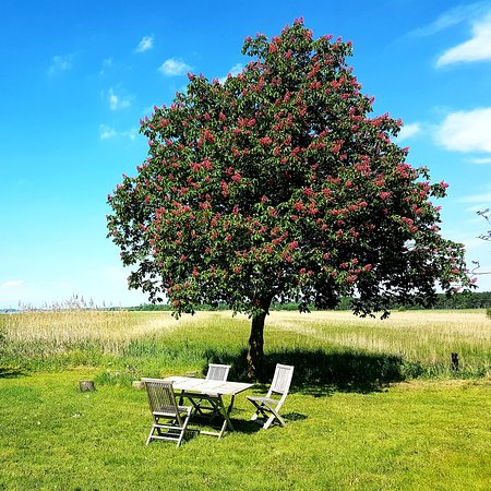 Dalby Huse, Dänemark: www.sommerhusidalbyhuse.dk