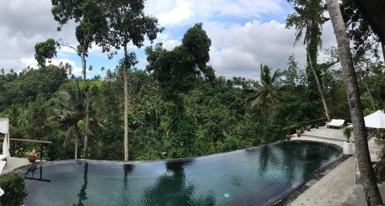 Photo3 Jpg Picture Of Amora Ubud Boutique Villas Tripadvisor