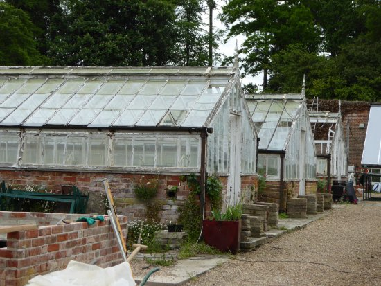 Hawkhurst, UK: The Victorian greenhouses under renovation
