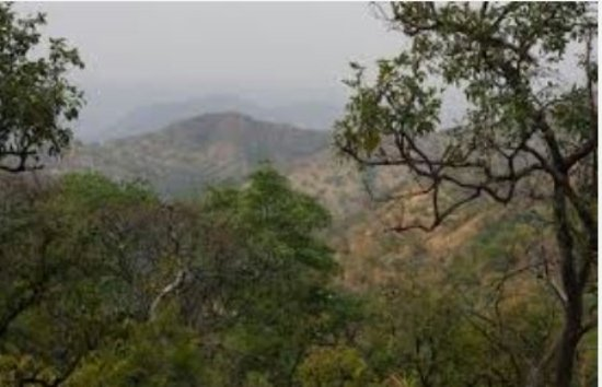 The mago national park