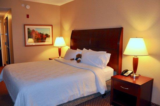 Hilton Garden Inn Bangor - Comfortable King Sized Bed