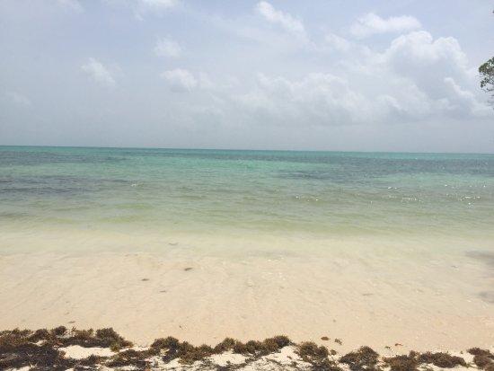 Punta Allen: photo0.jpg