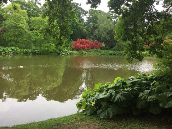 Uckfield, UK: Sheffield Park and Garden