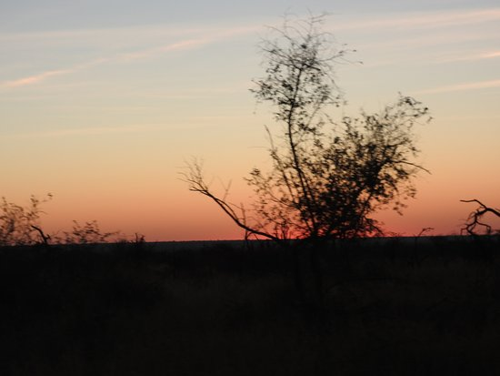 Impodimo Game Lodge: Sunset in the bush
