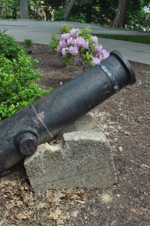 Andrew Carnegie Free Library & Music Hall: Cannons outside the front steps