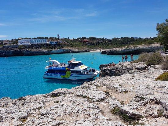 DSC_0059_large.jpg - Foto de Cala Domingos, Calas de Majorca - TripAdvisor