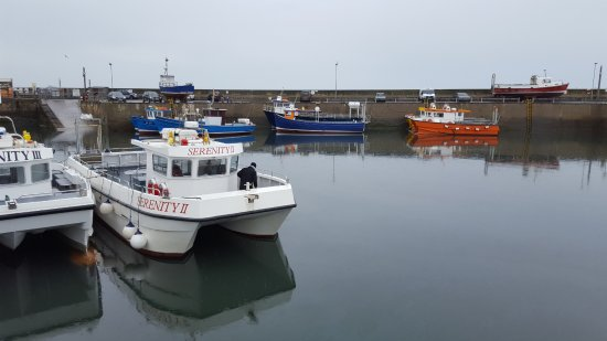 Serenity boat in Seahouses harbour