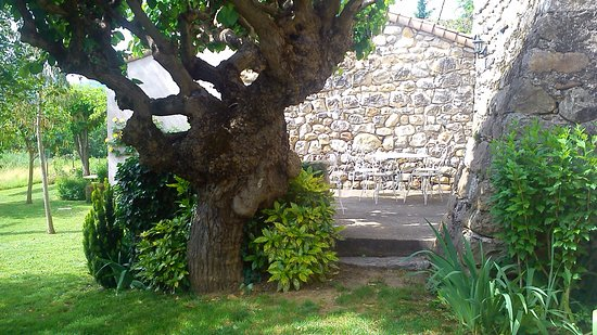 Ruoms, France: Le salon donnant accès à une terrasse ombragée