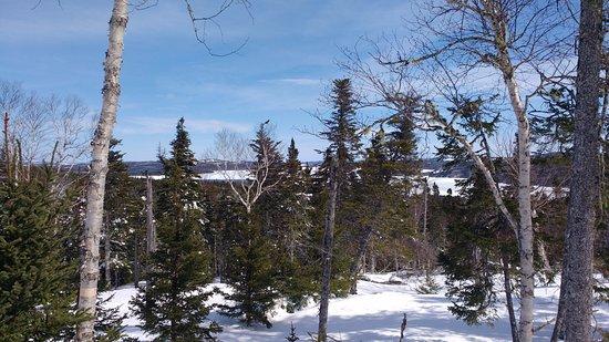Glovertown, Kanada: Balade hors des sentiers battus en raquette l'hiver...