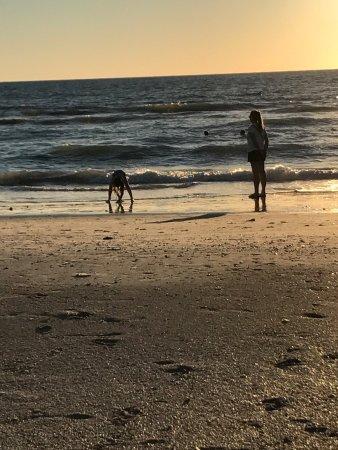 Belleair Beach, FL: photo1.jpg