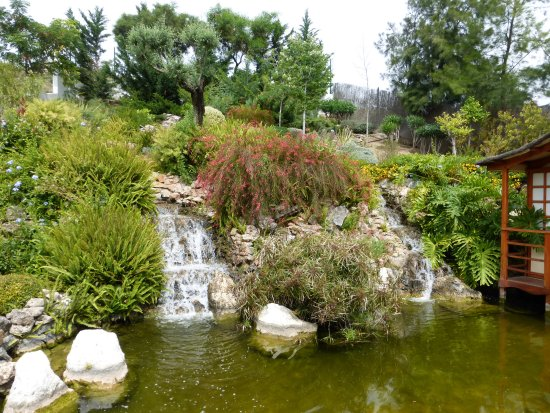 Japanse tuin picture of jardin botanico molino de inca for Jardin botanico torremolinos