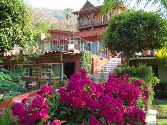 Casa de la Abuela: Flores multicolores de acuerdo a la estación.