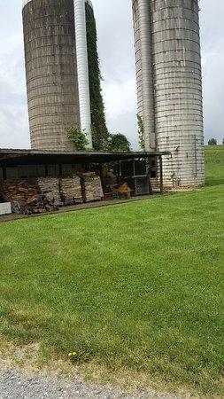 Raphine, VA: View of the silos