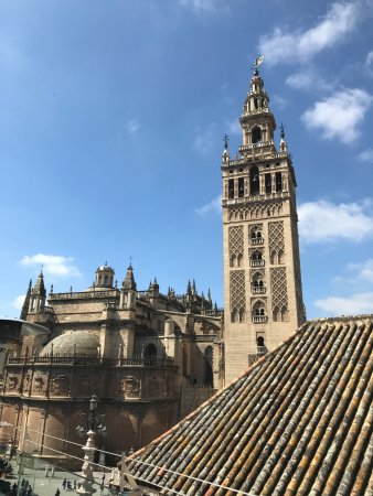 Hotel Dona Maria: Rooftop view of Cathedral