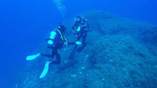 Blue hole deep dive photo de scuba kings dive centre - Dive deep blue ...