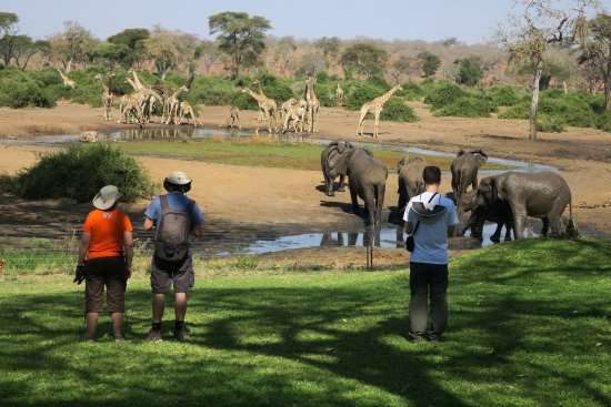 Elephant Valley Lodge: This could be you