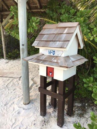 Grand Isle Resort & Spa: photo2.jpg