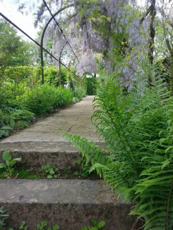 jardin de la pellerine la grande alle de glycine - Allee De Jardin