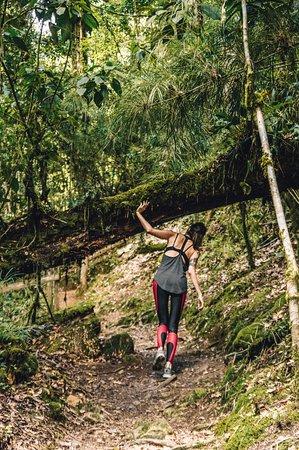 San Gerardo de Dota, Costa Rica: parte de los senderos dentro del hotel